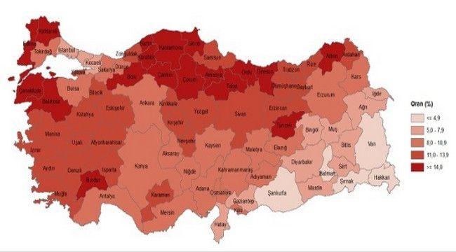 Erzurum yaşlı nüfusta üçüncü sırada