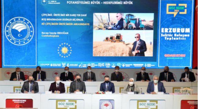 """Pakdemirli: """"Tarımsal hasılada Avrupa'da lider dünyada ilk on ülke içerisindeyiz"""""""