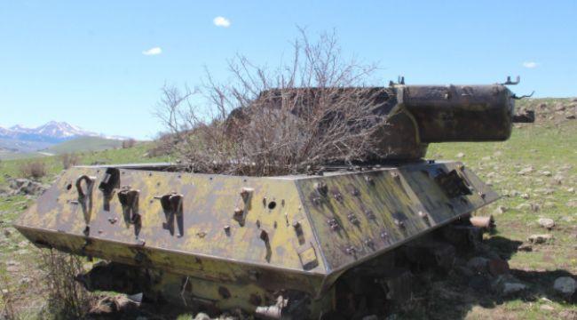 Dağ eteğindeki 70 yıllık tanklara doğa sahip çıkıyor