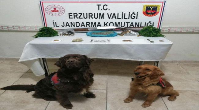 Erzurum'da hayvan hırsızlığı ve uyuşturucu operasyonu