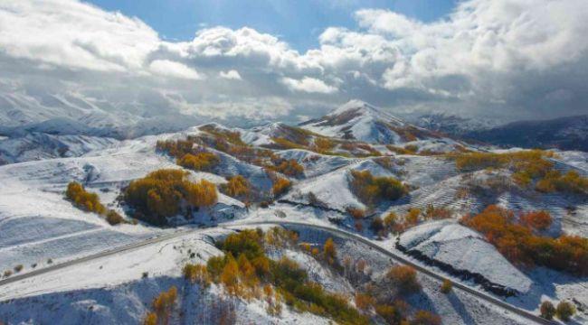 Erzurum ormanlarında kış ve sonbahar